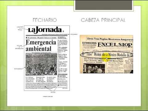 El periodico y su extructura externa.avi