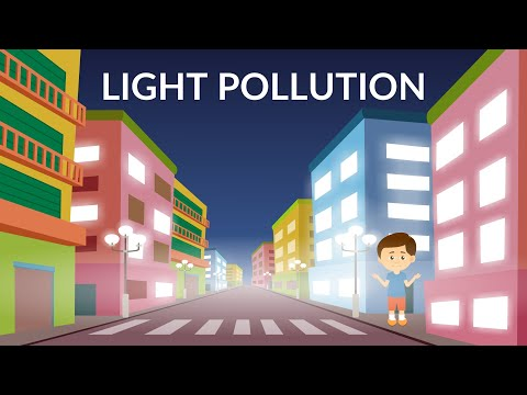 light-pollution-|-reasons-and-effects-|-video-for-kids