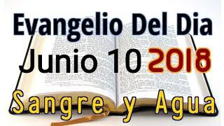 Evangelio del Dia- Domingo 10 Junio 2018- Reconocer mi Fragilidad- Sangre y Agua