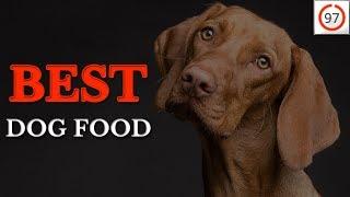 🏆Best Dog Food 2019: Dog Food Judge Reveals ⭐97/100⭐