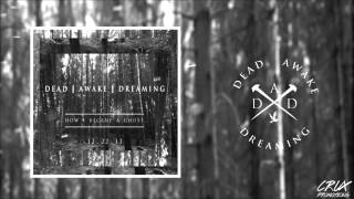 Dead Awake Dreaming - How I Became a Ghost