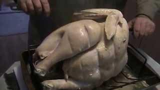 Roasting a 20lb Turkey