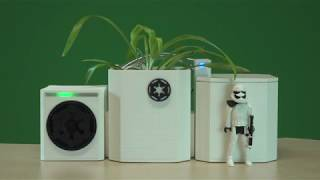 Self Watering Empire Plant Pot - a raspberry pi, maker and python project - startup sequence