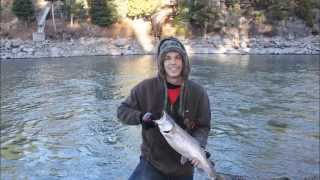 5 lb Rainbow Trout Lassen County Ultra Light Fishin