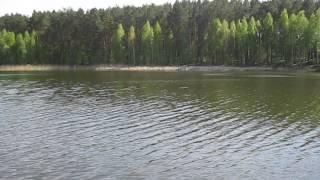 Озеро в селе Унучки(Продажа дома с участком на самом берегу озера! Эксклюзивно живописное расположение и вид! Приватизированны..., 2014-05-05T08:40:51.000Z)