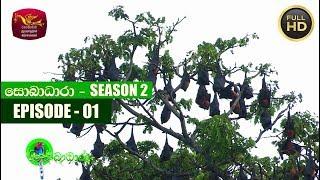 Sobadhara - සොබාධාරා   Season- 02   Episode 01   2018-01-05   Rupavahini Documentary Thumbnail