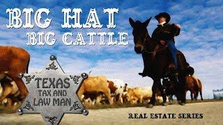 Big Hat - Big Cattle: Installment Sales