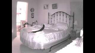 Repeat youtube video IP Camera Trolling - Wake Up Call #1