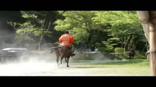 Travel Jepang: Kuil Kamigamo Pesona Mekarnya Sakura dan Pemandangan Tertutup Salju, Kyoto