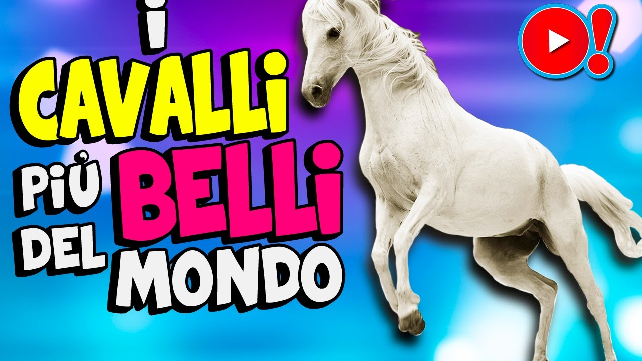 I cavalli pi belli del mondo 1 videopazzeschi tv youtube for I pavimenti piu belli