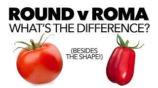 Tomatoes: Round vs Roma — What