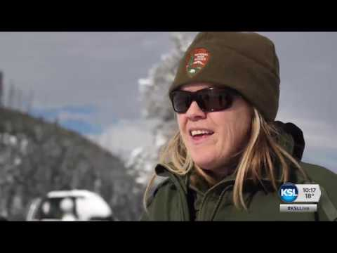 Yellowstone in winter 'like a different planet'