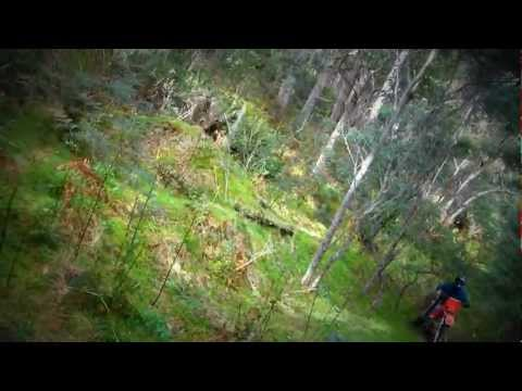 Awesome single track. on Gasgas, Yamaha, Honda in tasmania MP4