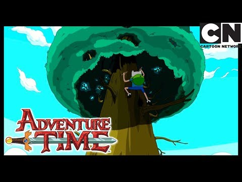 Adventure Time | Up A Tree | Cartoon Network