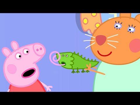 Peppa Pig en Español Episodios completos | LA TORTUGA DE LA DOCTORA HAMSTER | Dibujos Animados