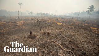 Drone footage reveals aftermath of Amazon fires