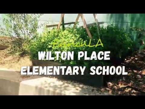 Wilton Place Elementary School (EnrichLA)