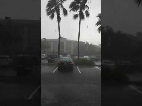 Irma in Pembroke Pines live