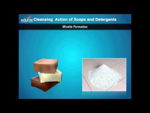 Cleansing Action of Soaps and Detergents