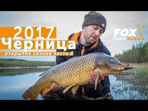 Карпфишинг TV: Fox Team Russia. Открытие сезона Черница 2017. Часть2