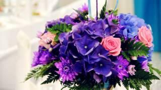 Фиолетово-бирюзовая свадьба Алины и Никиты