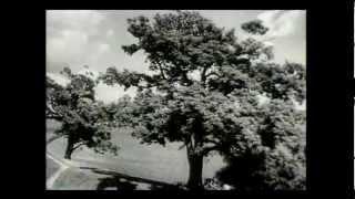 Bezhin Meadow / Pré Béjine / Бежин луг - 1