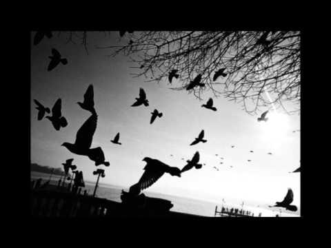 Cr7z - Haltet die Welt an / Fly away (InstinkTBeatZ - RMX - Exclusive)