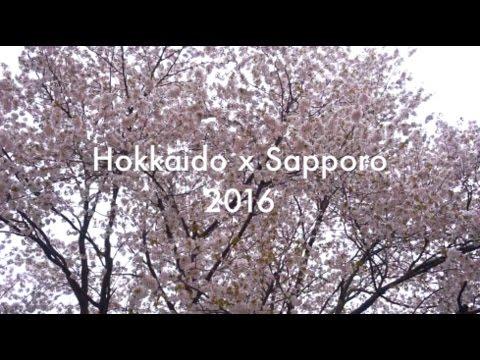 Hokkaido x Sapporo II | 2016