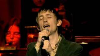 The Divine Comedy - No One Knows