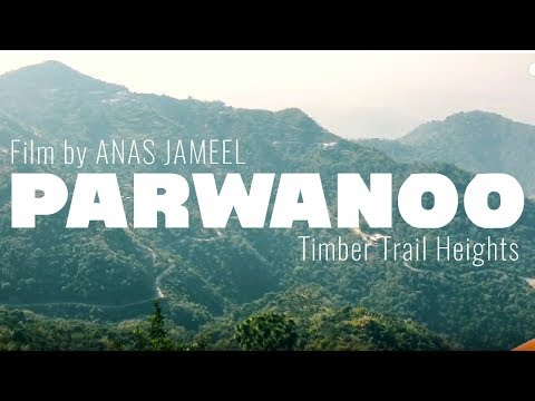 Chandigarh to Parwanoo | Road Trip | Timber Trail Heights