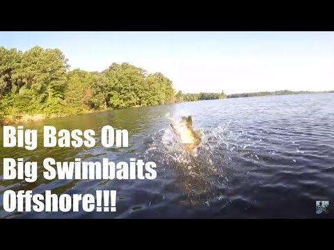 Lake Fork Summer Bass Fishing: Offshore Big Swimbait Tips!!!