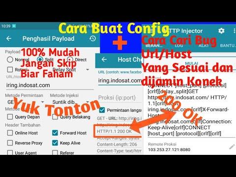 Cara buat Config + Cara Cari Bug Url/Host Yang Konek || Http Injector 2019