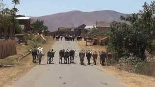 Madagascar 2013 - RN7 Ranohira Ambositra