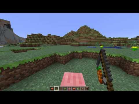 Minecraft - Carrot On A Stick