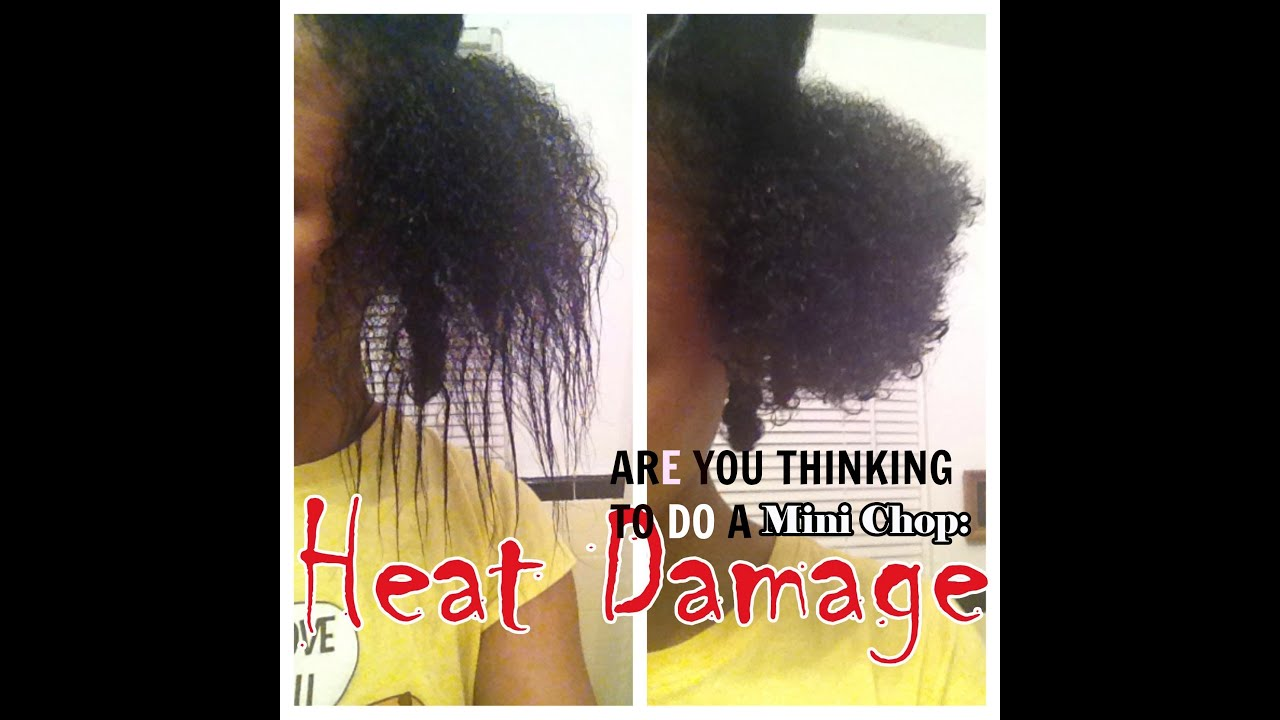 Highly Requested Heat Damage Repair Simple Tips Product Recommendation You