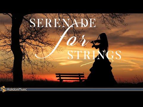 Serenade for Strings - Tchaikovsky, Dvorak, Mozart