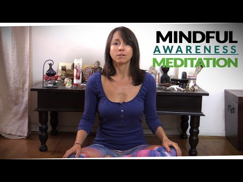 Mindful Awareness Meditation with Michelle Goldstein