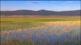 Parc National Ifrane Maroc