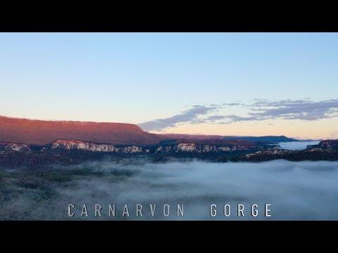 Hiking 28km In Carnarvon Gorge