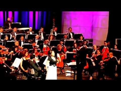 Cairo Opera Orchestra/Gala Concert/01/06/2015 Dvorgak RUSALKA