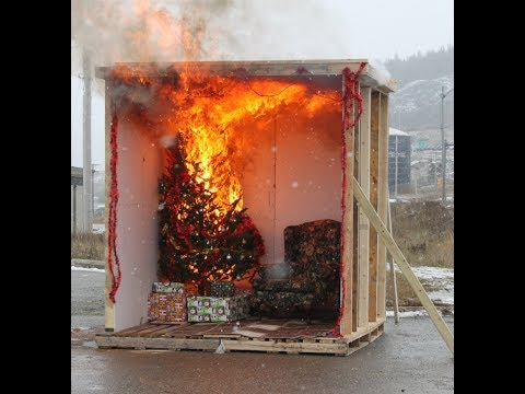 Corner Brook Fire Department Live Safety Demonstration & Tree Burning