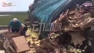 Chinese villagers scramble to loot baby chicks after van containing 10,000 fowl overturns