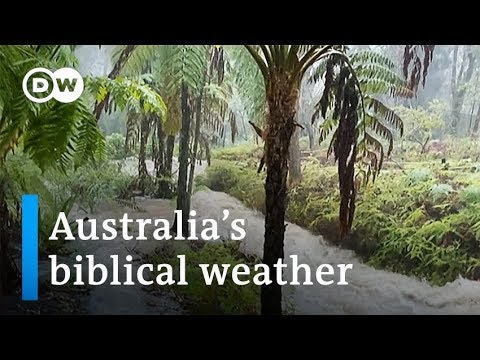 Australia goes from brutal bushfires to flash floods | DW Ne