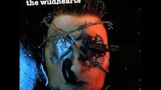 The Wildhearts  - The Best Of The Wildhearts