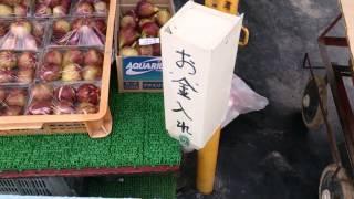 八幡の北村農家直売所.