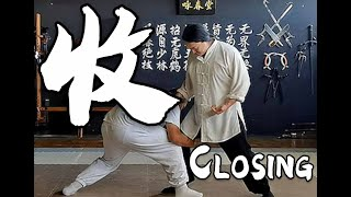 Tai Chi 24 Application - Section 24: Closing - 收势 screenshot 3