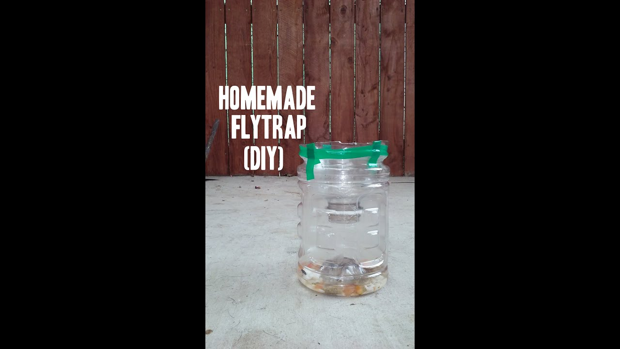 easy homemade fly wasp trap diy how to youtube. Black Bedroom Furniture Sets. Home Design Ideas