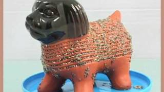 Chia Pet Time Lapse (Puppy)