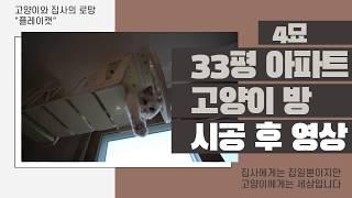 대구 33평 아파트 고양이방 - 플레이캣 고양이 투명 …