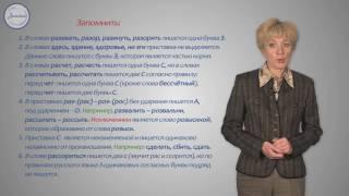 Русский язык 10 класс. Правописание гласных и согласных в приставках